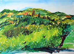 The Chianti Hillside